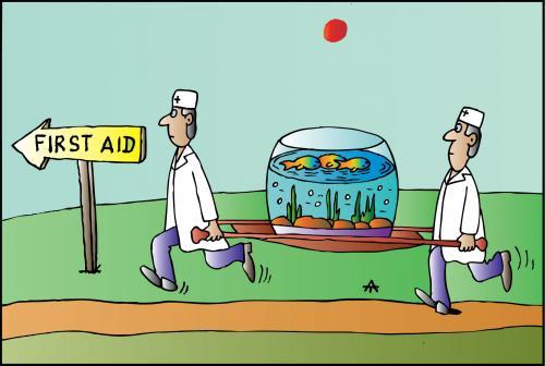 Профилактика болезней в аквариуме