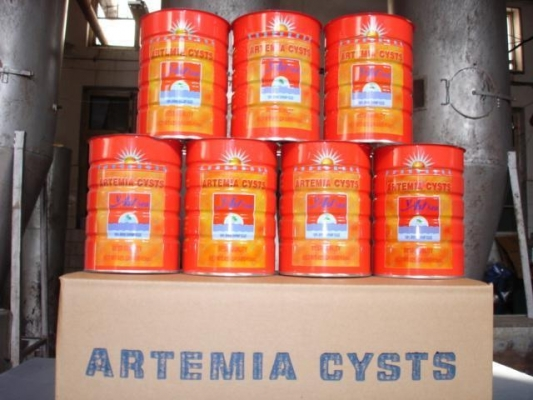 artemiaes