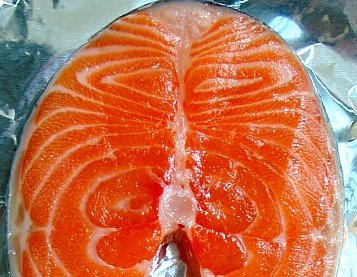 salmon-ts