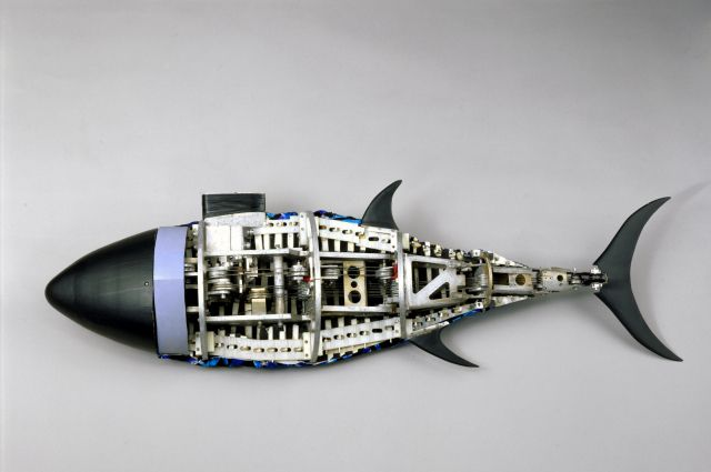 Рыба - робот