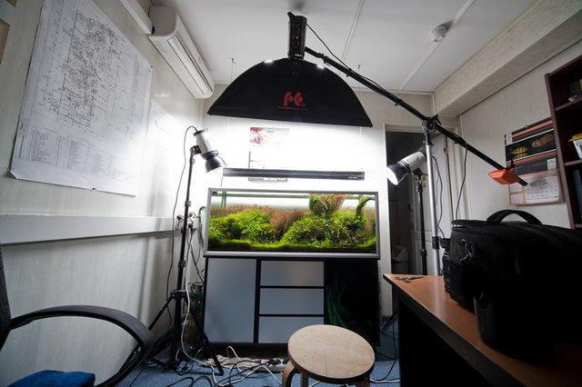 Съемка аквариума 2