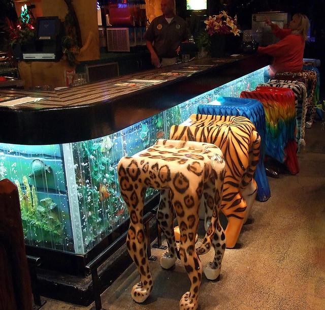 Аквариум в баре