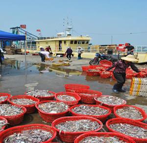 Рыбный аукцион в Китае