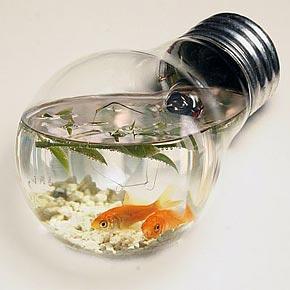 аквариум лампочка