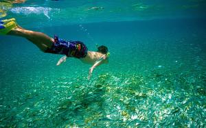 Большой Барьерный риф — одно из самых популярных мест для дайверов