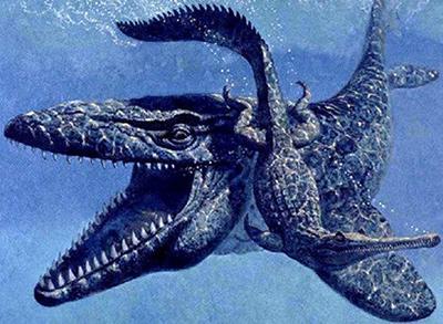 Мозазавр 3