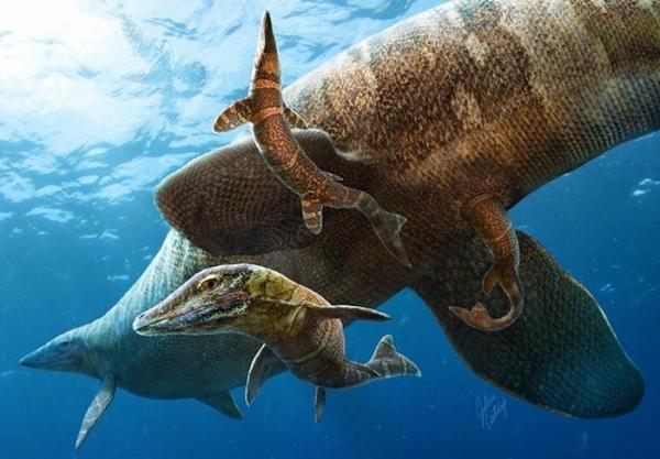 Рождение мозазавра
